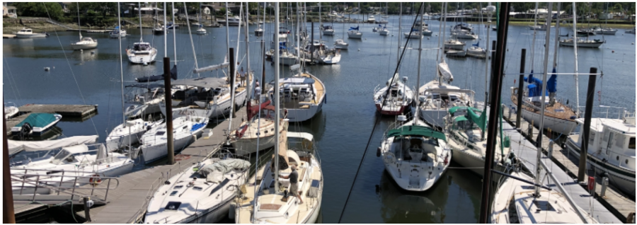 Boating's Unexpected Boom During Covid